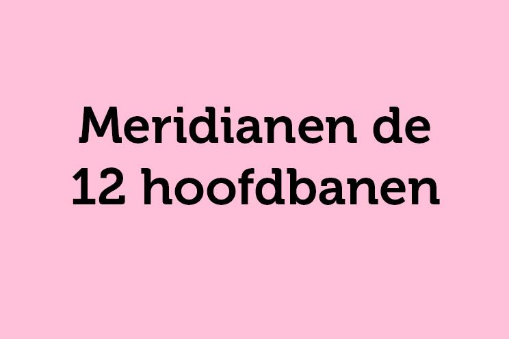 Meridianen de 12 hoofdbanen